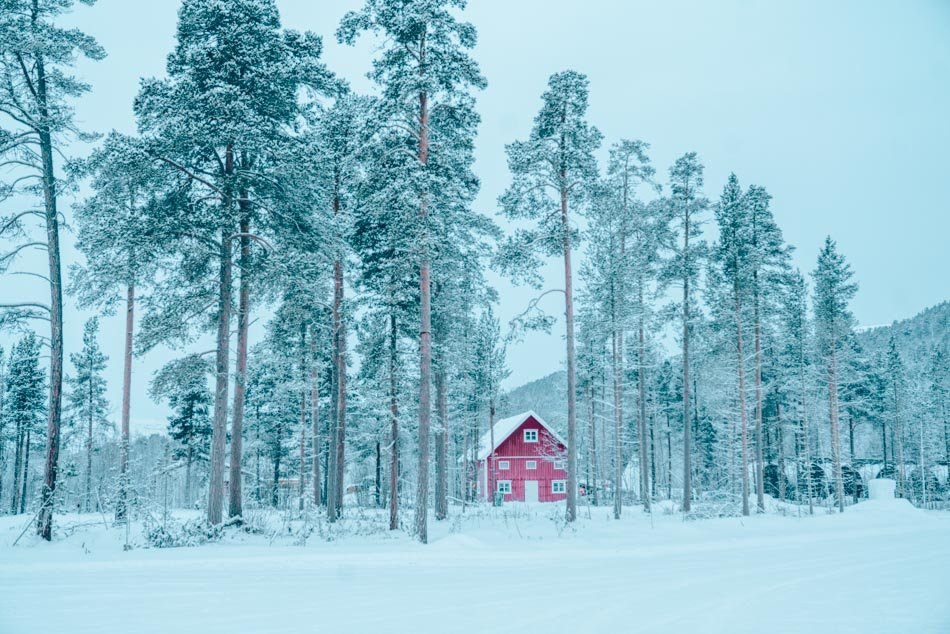 A cheerful red cabin tucked into a snowy forest in Alta, high above the Arctic Circle.