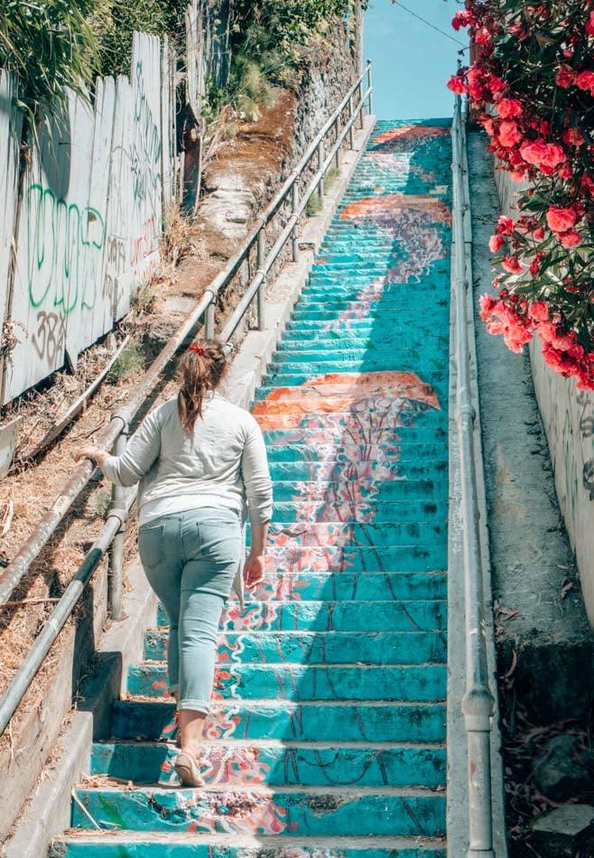 The Carrington Steps in Oakland, California