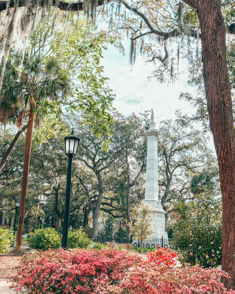 Tall statue standing in a square under trees dripping with Spanish moss and above pink Azalea blooms in Savannah, Georgia