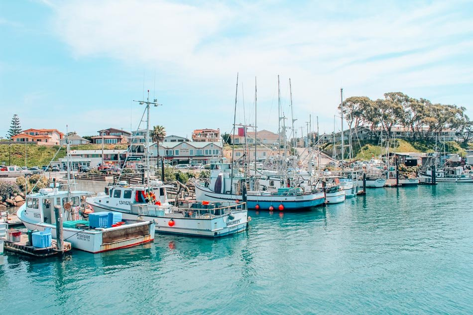 Morro Bay, California is a tiny coastal town along California's Central Coast and one of the best places to stop on a California road trip down Highway One/the Pacific Coast Highway! Here are all the best things to do in Morro Bay.