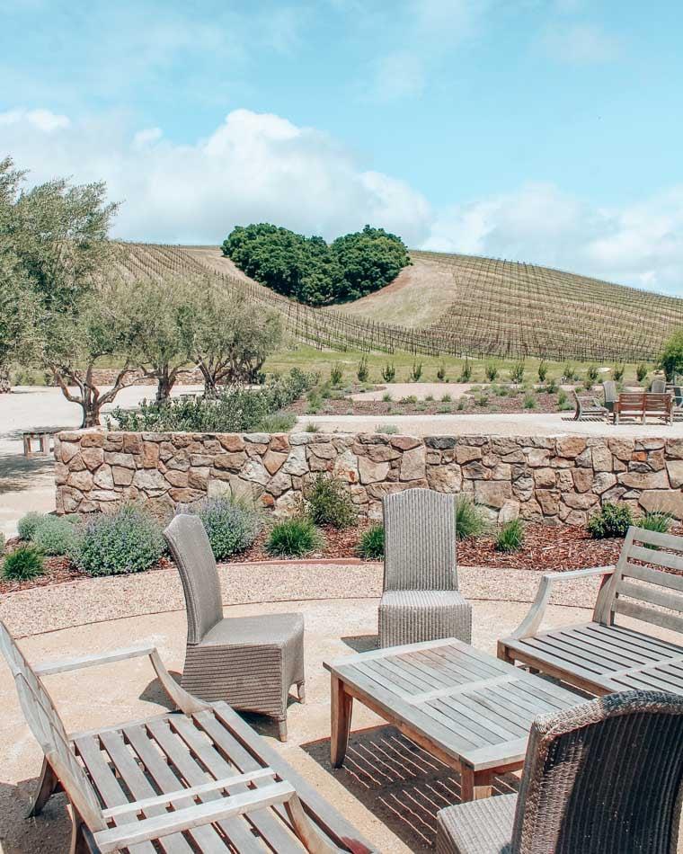 Heart Bush at Niner Wine Estates