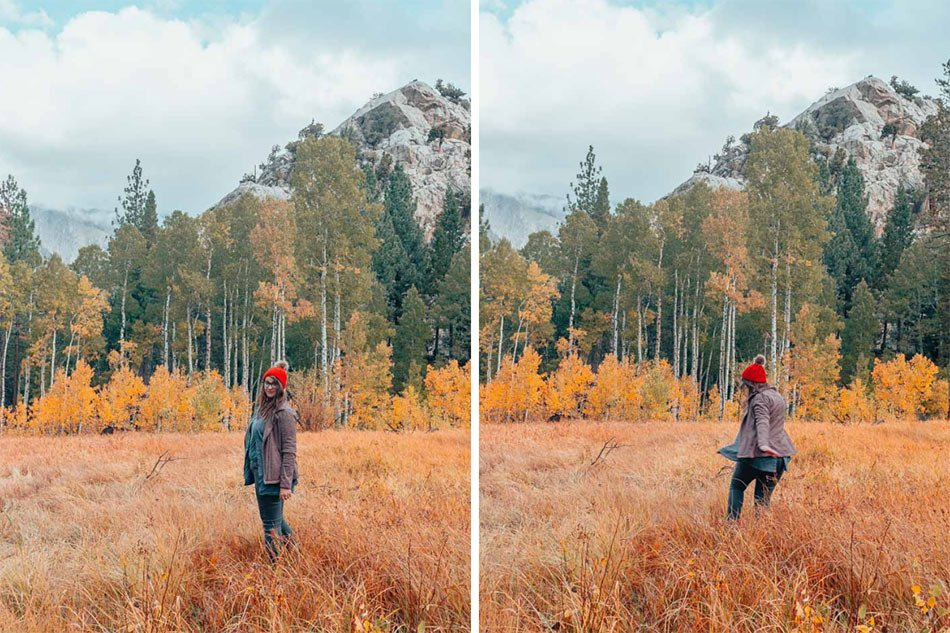 Frolicking in the fall foliage in June Lake, California.