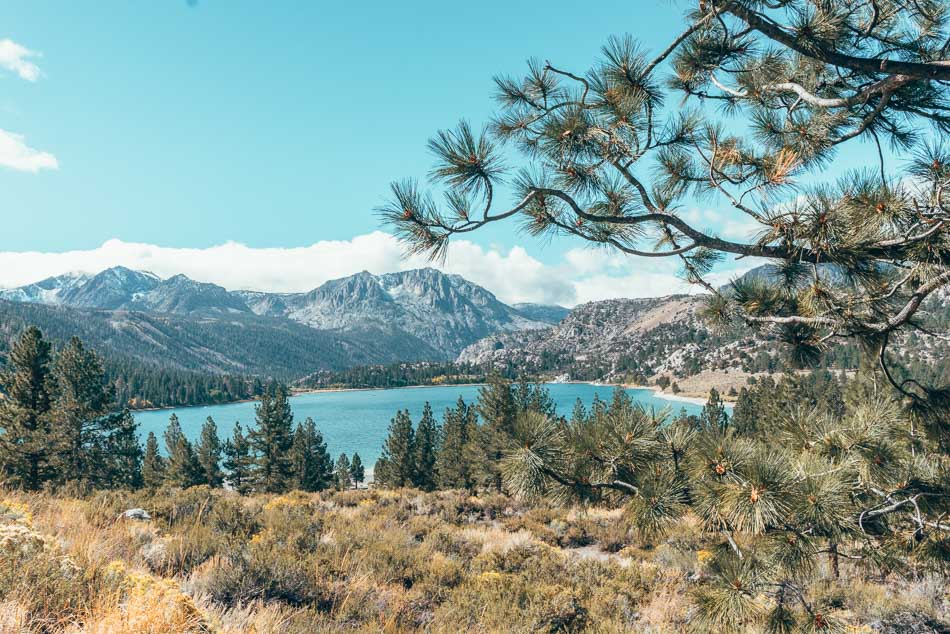 June Lake and Carson Peak through the pine trees in June Lake, California in the eastern Sierra Nevada mountains.