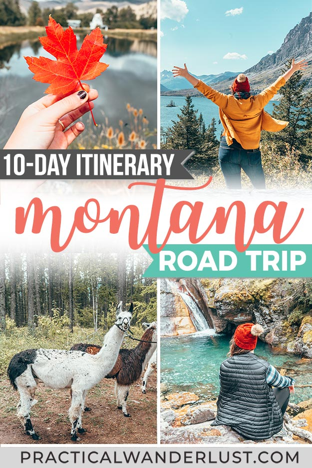 The perfect 10-day Montana road trip itinerary! This Montana road trip includes Missoula, Whitefish, Glacier National Park, and Flathead Lake all in one epic Montana itinerary. Complete with llamas.