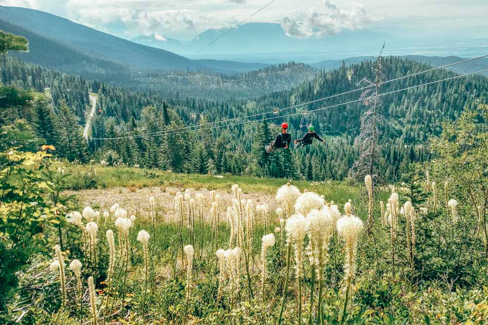 Ziplining at Whitefish Mountain Resort!