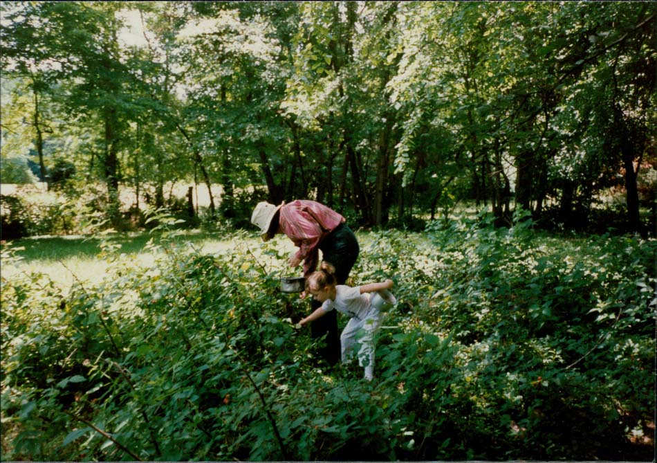 Katy picking blueberries with either me or my sister (pretty sure it's my sister).