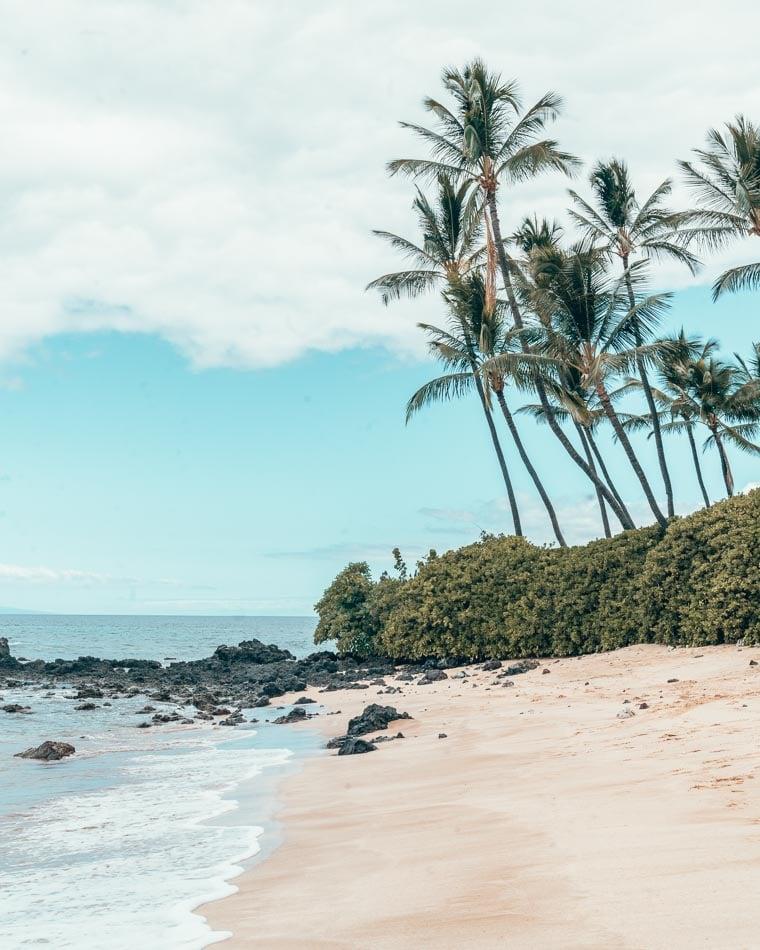 Beach and palm trees on Maui, Hawaii.