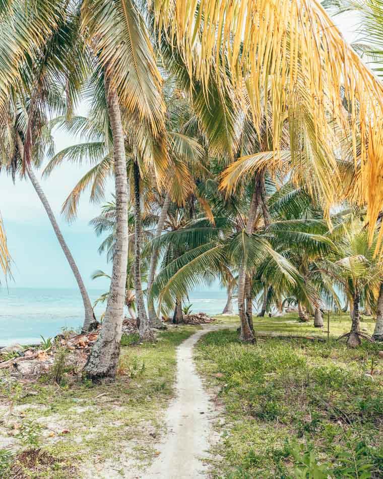 Beach path in the San Blas Islands aka Guna Yala, Panama