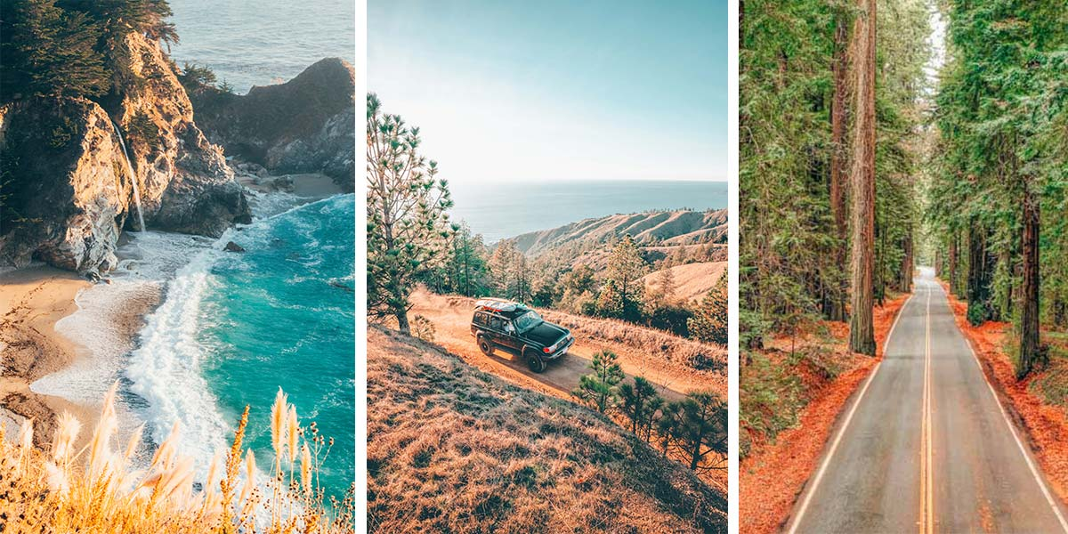 This 10-day California coast road trip itinerary covers all of our favorite Californian things: sunny beaches and foggy coastline, swaying palm trees and towering redwoods, playful otters and flomping elephant seals, fresh oysters and vintage wines - there's even a clothing-optional hot spring, if you're up for it. Here's everything you need to know about driving Highway One/the Pacific Coast Highway.
