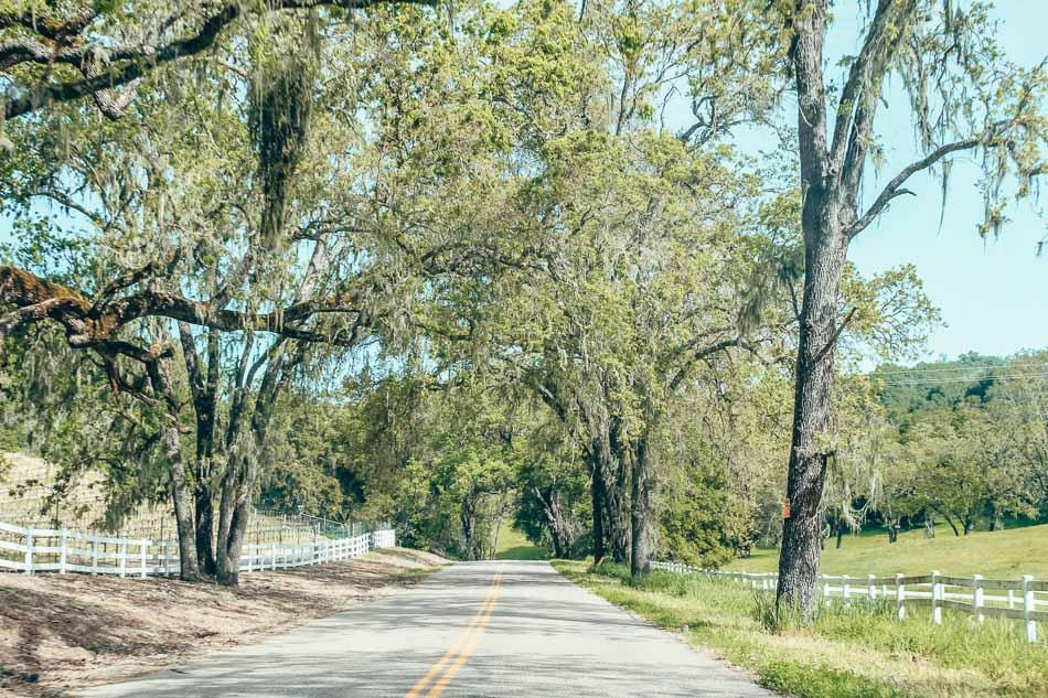 Paso Robles scenic road in California's Central Coast