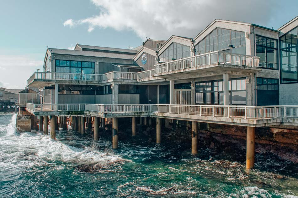 Monterey Bay Aquarium on a California Highway One Road Trip
