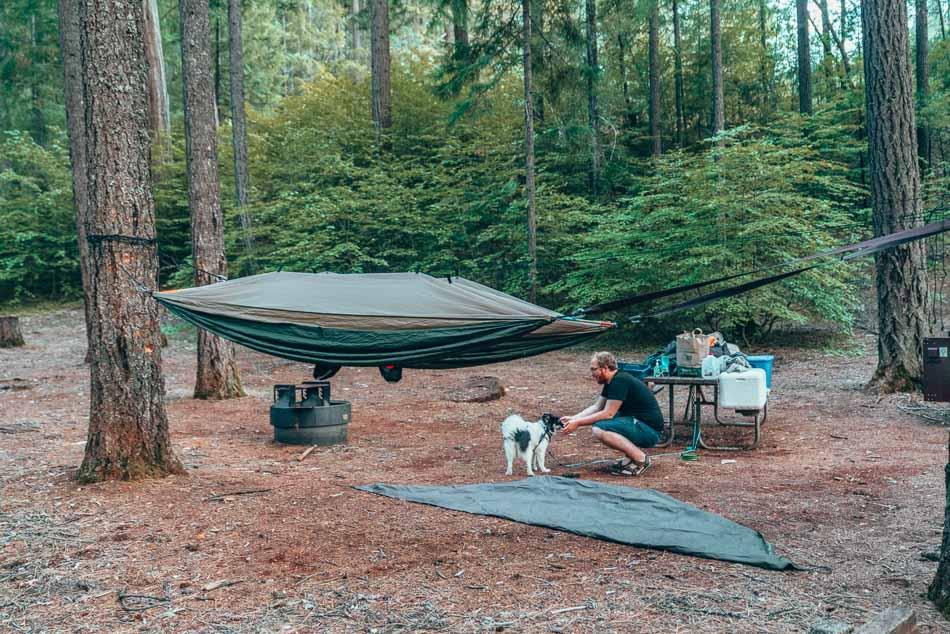 Hammock camping setup in Northern California.