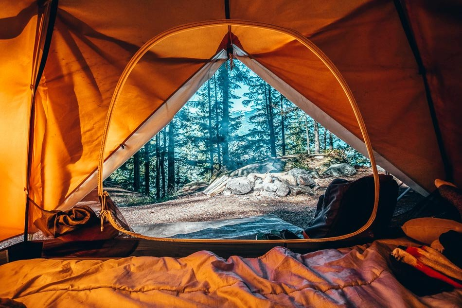 Forest and mountain views from inside a tent on a camping trip.