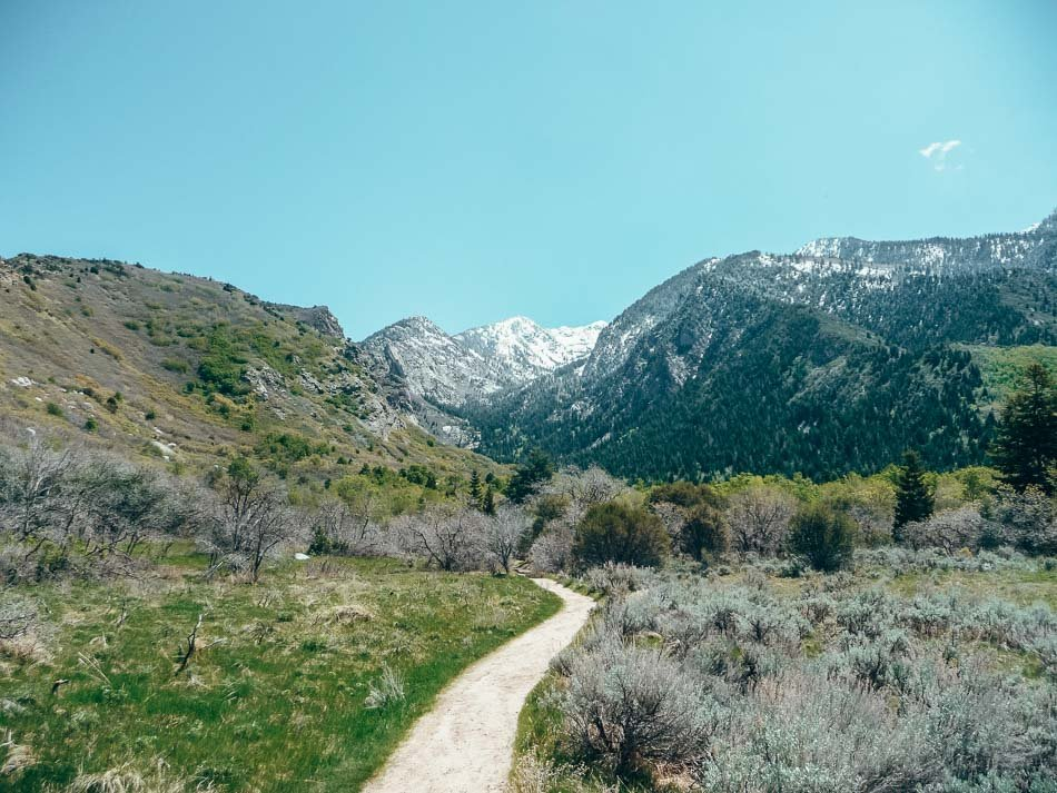 The trail up Bells Canyon to the lower waterfall. At Bell's Canyon, near Little Cottonwood Canyon, outside of Salt Lake City, UT.