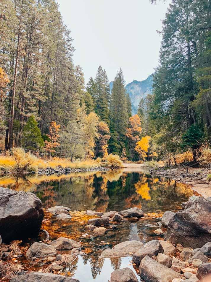 Small creek at Yosemite Park in Ca.