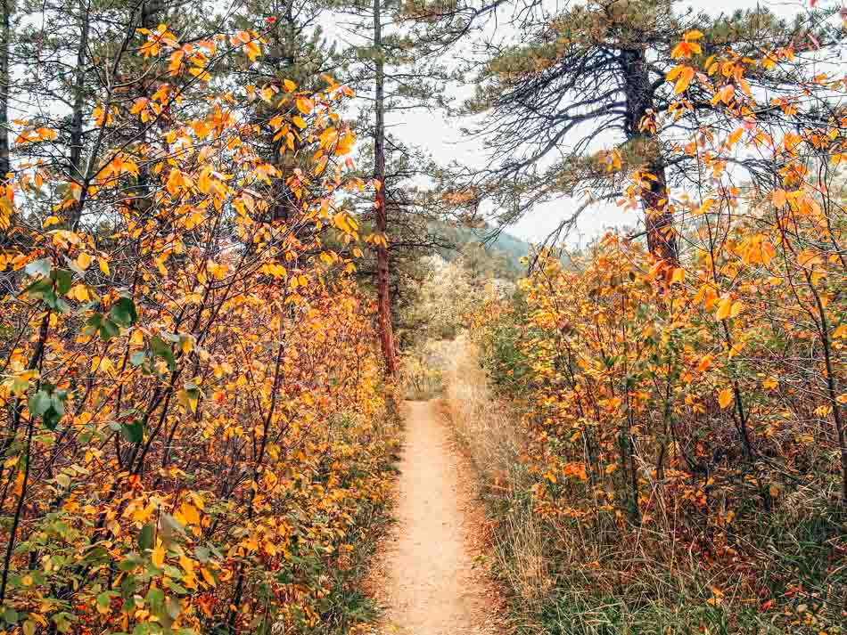Hiking to Greyrock near Fort Collins, Colorado