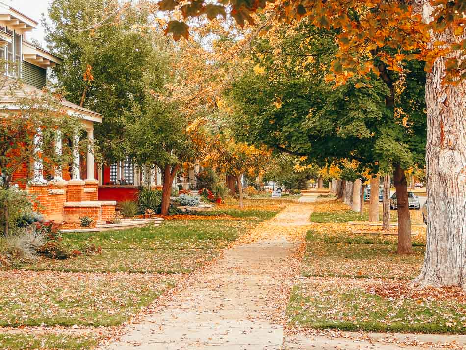 A peaceful fall day on Mountain Ave in Fort Collins, Colorado.