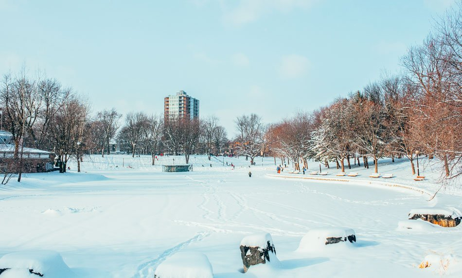 The frozen lake at La Fontaine Park in Montreal, QC used for ice skating.