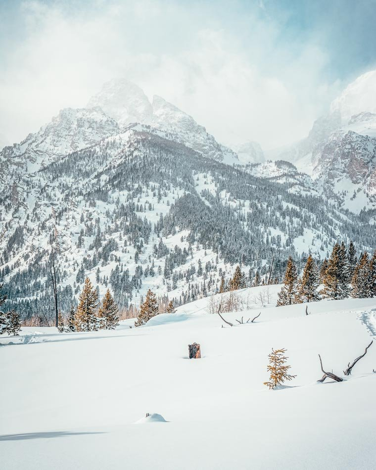 Snow-covered mountains and trees in Grand Teton National Park, Wyoming.