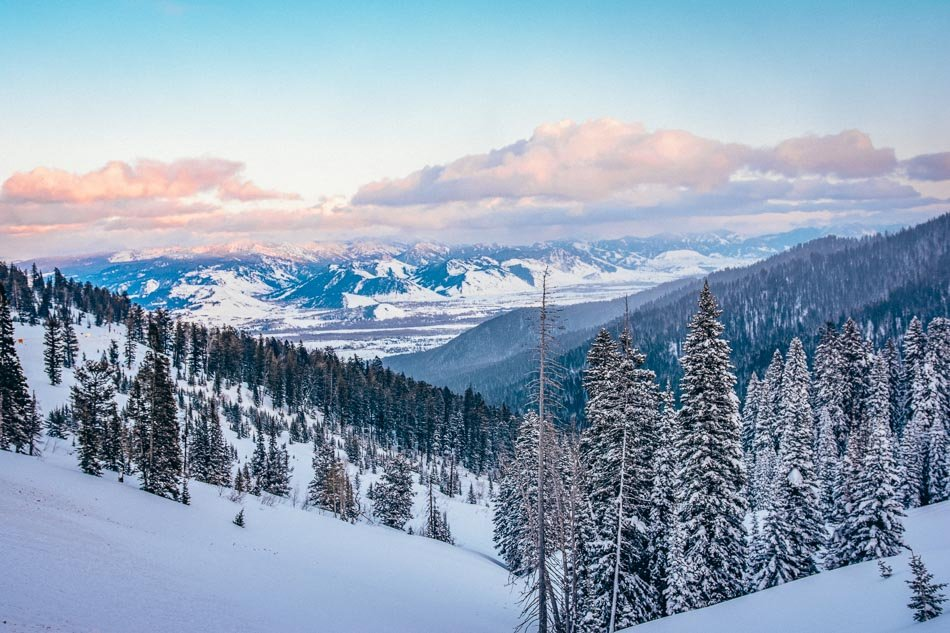 The view from above of the snowy mountains and trees while skiing in Jackson Hole, WY.