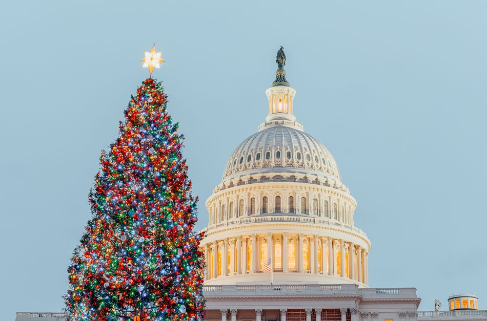 Christmas tree in front of Congress in the early evening as sun setting over Washington DC.