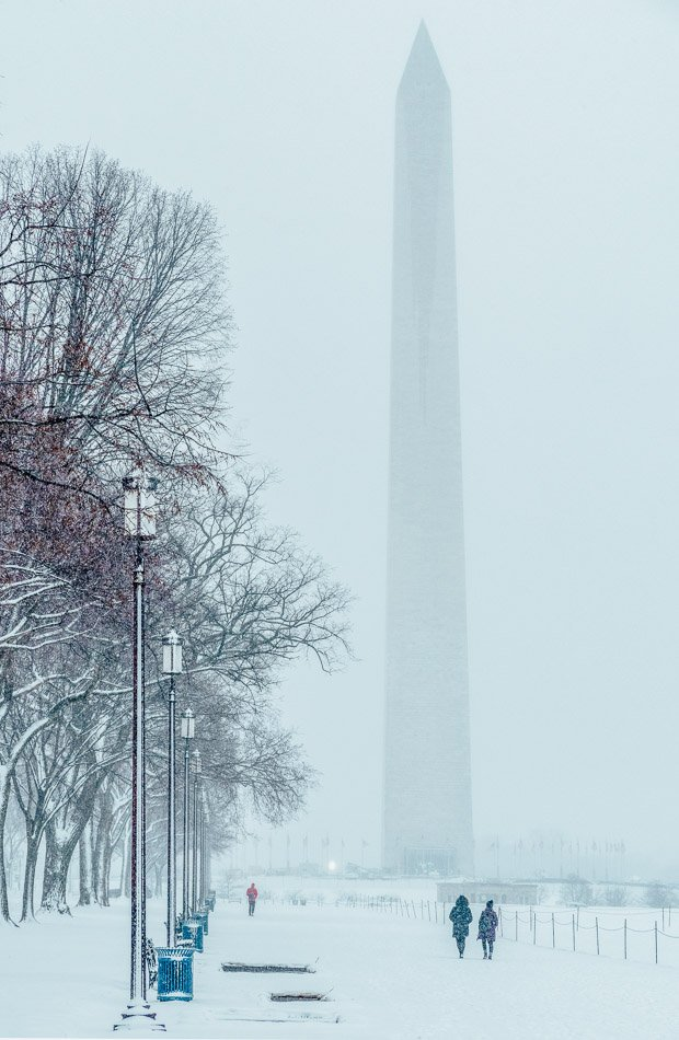 Washington Monument on a snowy day in Washington, DC, with elm trees, lamp posts, and visitors.