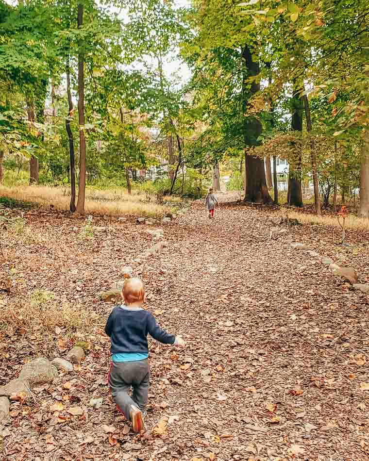 Little boy running through yellow leaves on a forest trail, with a little girl in the distance.