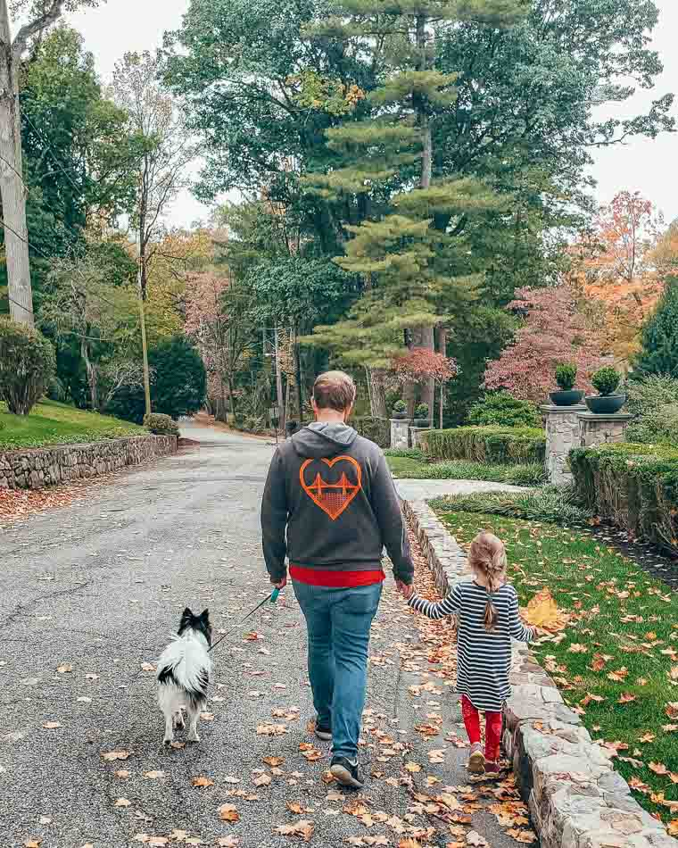 Man walking a dog while holding hands with a little girl, who is holding a large autumn leaf.