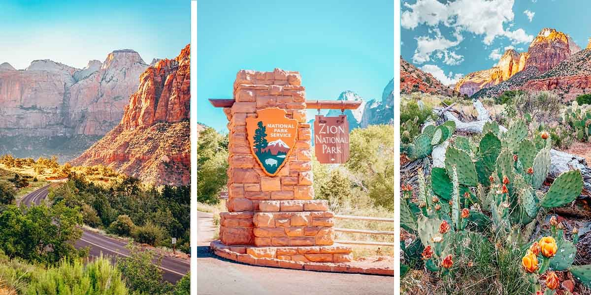 Things to do in Zion National Park, Utah, from hiking to stargazing! Plus, things to know before you go, where to stay at Zion, and more.