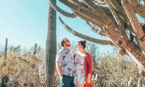 Couple stands underneath a tree-sized cactus in Tempe, Arizona