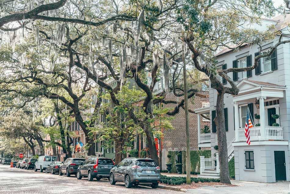 Treelined Jones Street in Savannah, Georgia