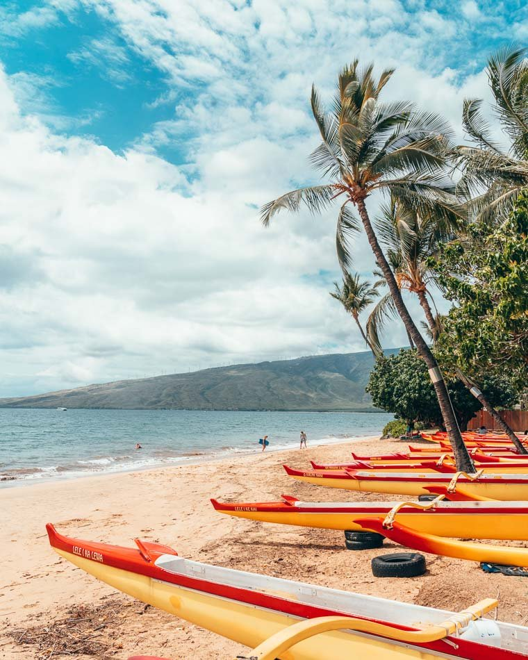 Brightly colored outrigger canoes on the beach against a bright blue sky and palm trees in Kihei, Maui, Hawaii