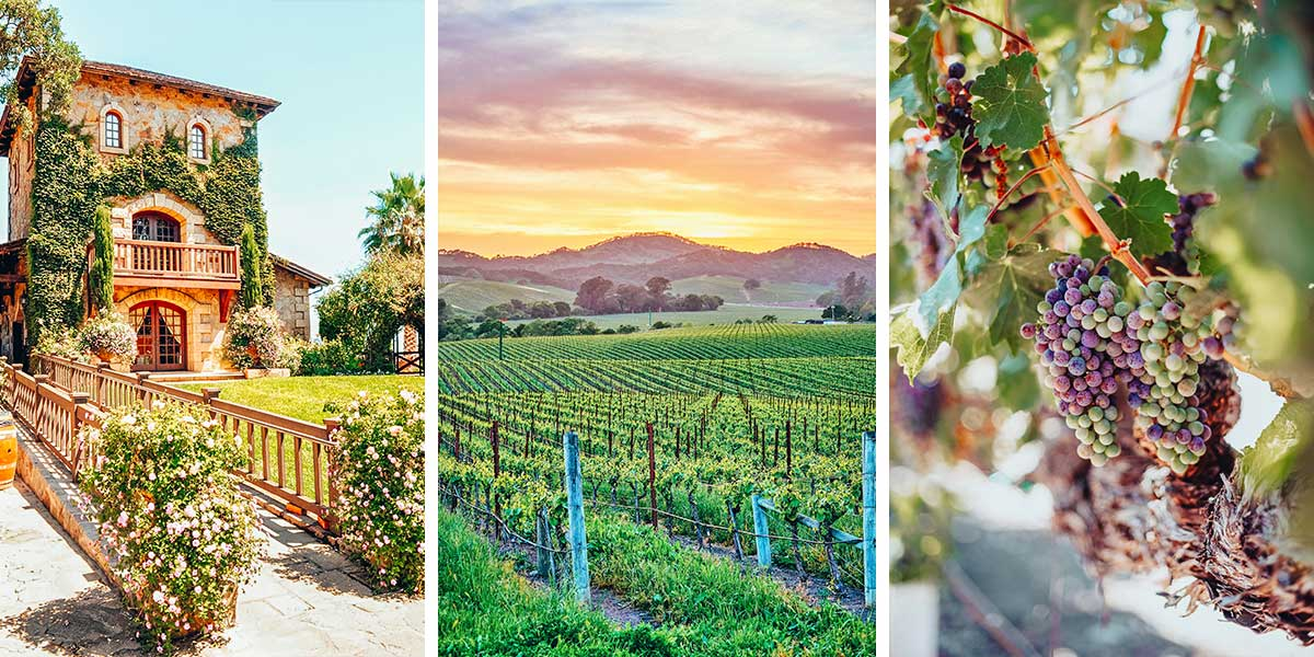 The best Napa wineries, by a Sommelier! Napa Valley, California wine tasting is the best in the country, and Napa is the most scenic wine country in California.