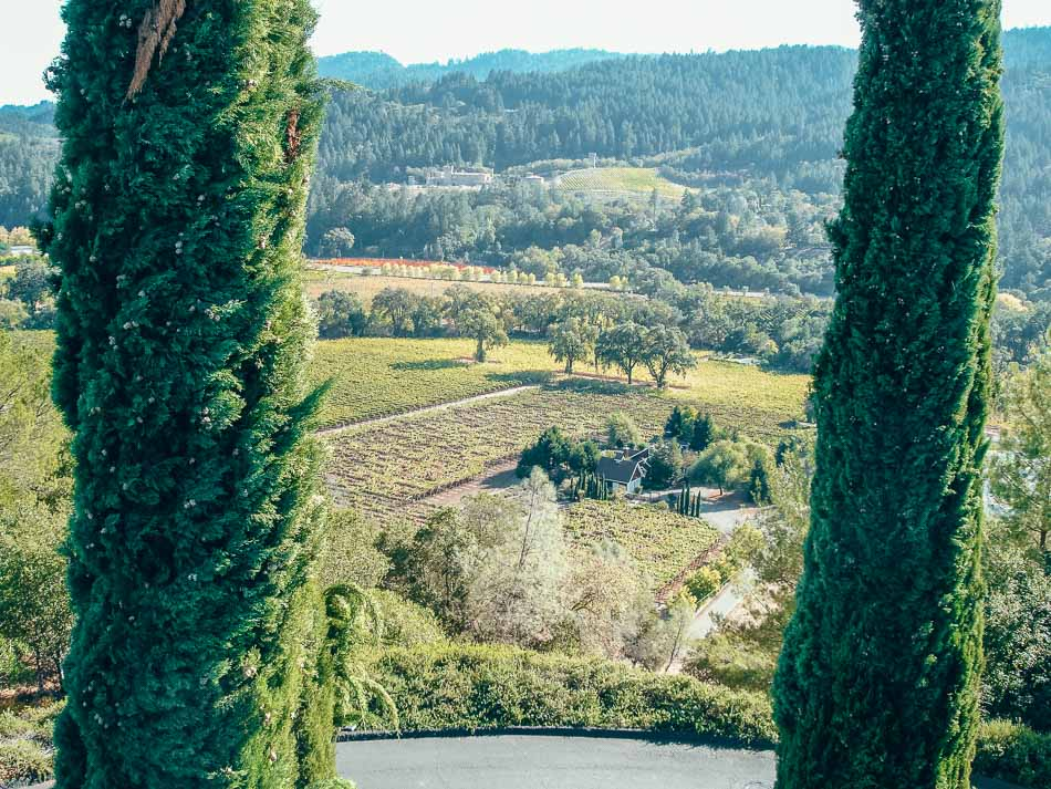 Grounds from above at Sterling Vineyards in Napa Valley, California
