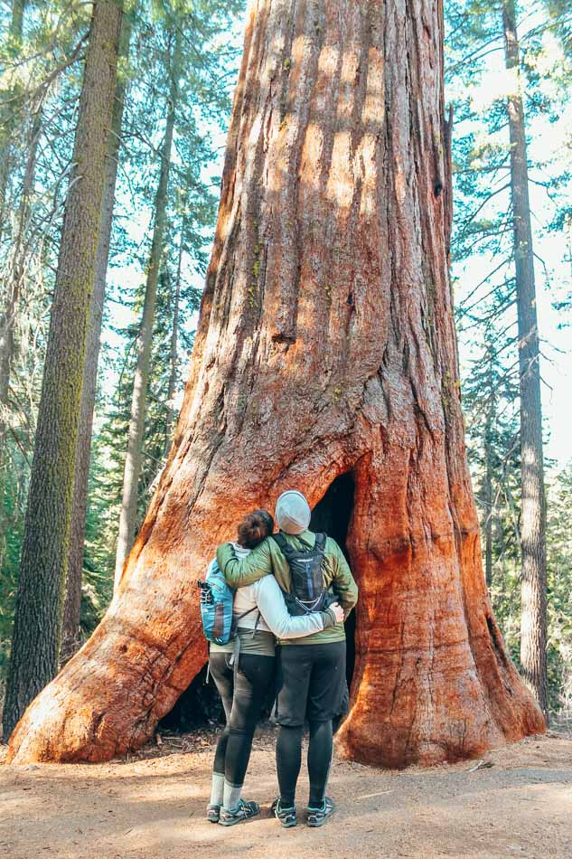 Lia and Jeremy in front of a giant sequoia tree in Yosemite National Park, California