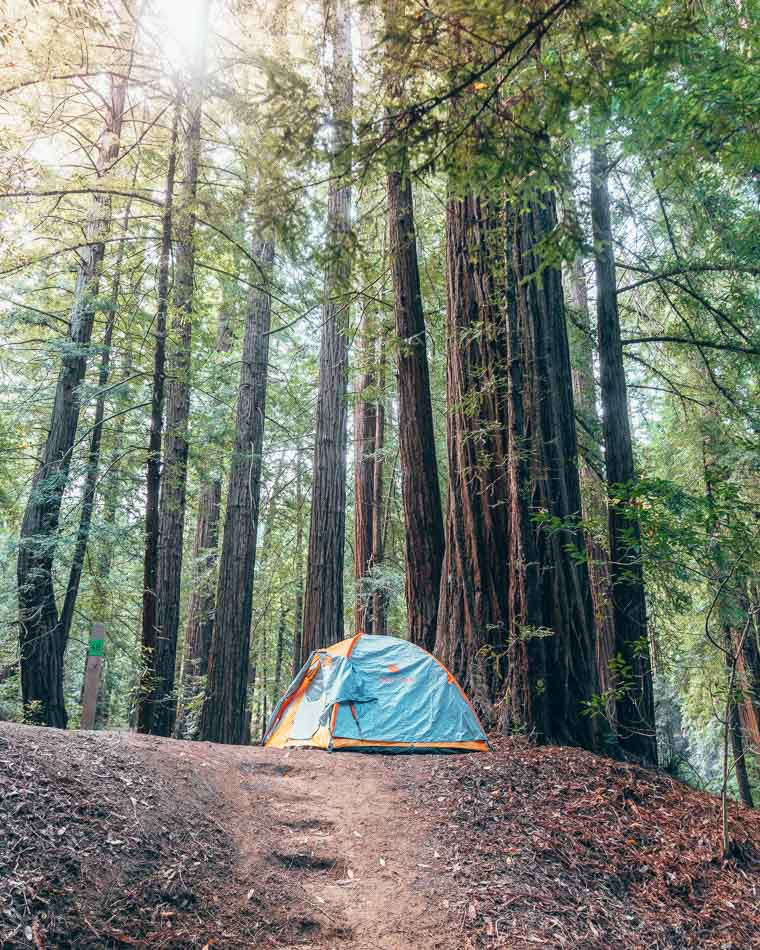 Tent among the redwoods at Ventana Campgrounds in Big Sur, California.