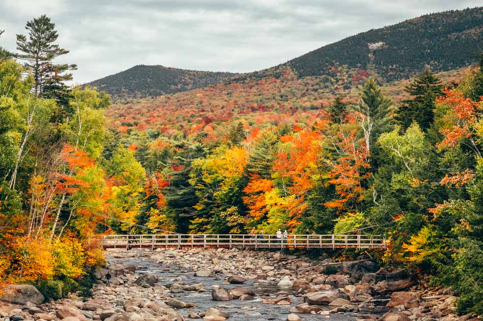 A bridge and trail over a stream with fall foliage surrounding it in the White Mountains in New Hampshire