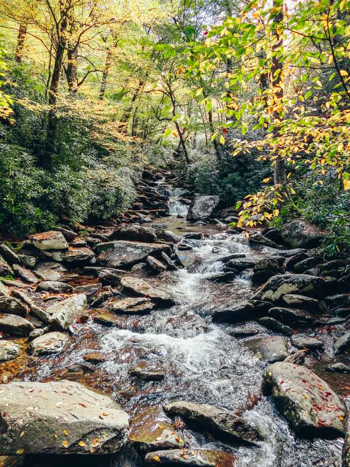 Fall colors and a stream flowing through Chimney Tops Trail in Great Smoky Mountains National Park