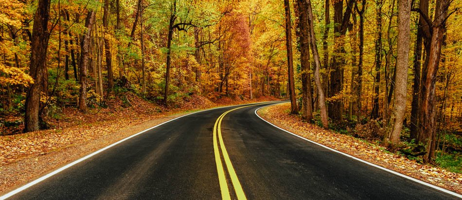 Newfound Gap Road lined with the fall colors in Great Smoky Mountains National Park