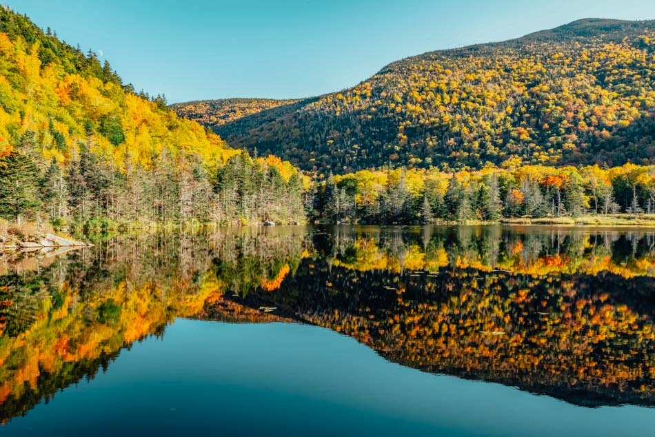 The yellow fall foliage with Beaver Brook Pond in the front in North Woodstock, New Hampshire