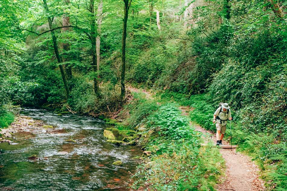 A man hiking on the Cataloochee hike and trail beside a creek in Great Smoky Mountains National Park