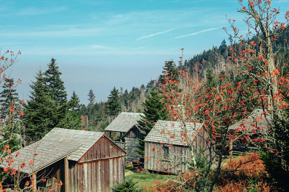 Wooden lodges and accommodations of LeConte Lodge atop Mt. LeConte in Great Smoky Mountains National Park.